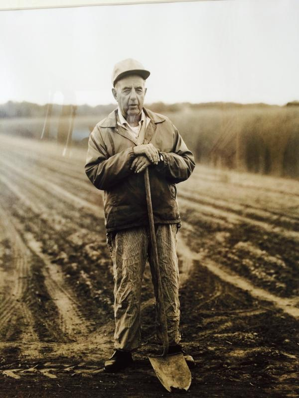 "Tony Lattari's ""Henry Schwenck, Long Lane Farm, East Hampton,"""