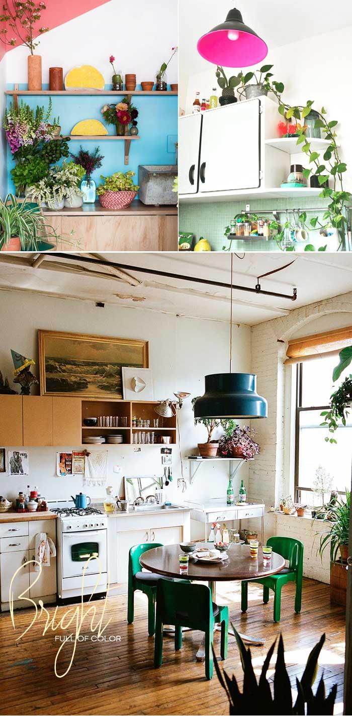 Dine-X-Design-Plants-On-Kitchen-Shelves