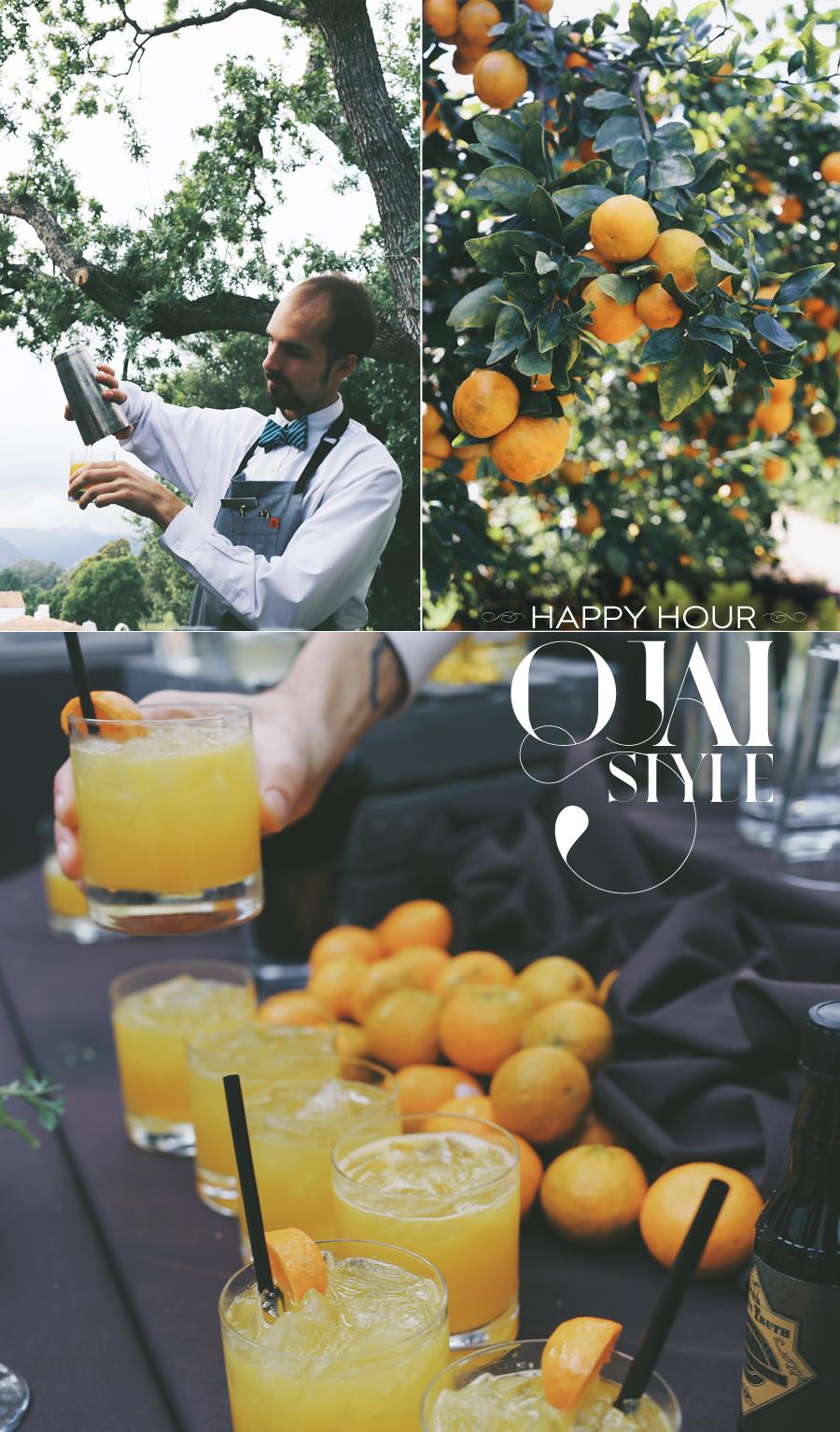 Bourbon & Pixie Tangerine Shrub Cocktail | Dine X Design