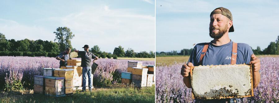 Old Blue Raw Honey | Farm Visit | Dine X Design