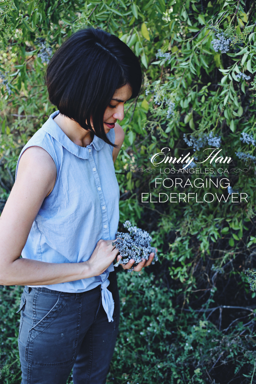 Interview With Herbalist Emily Han | Dine X Design