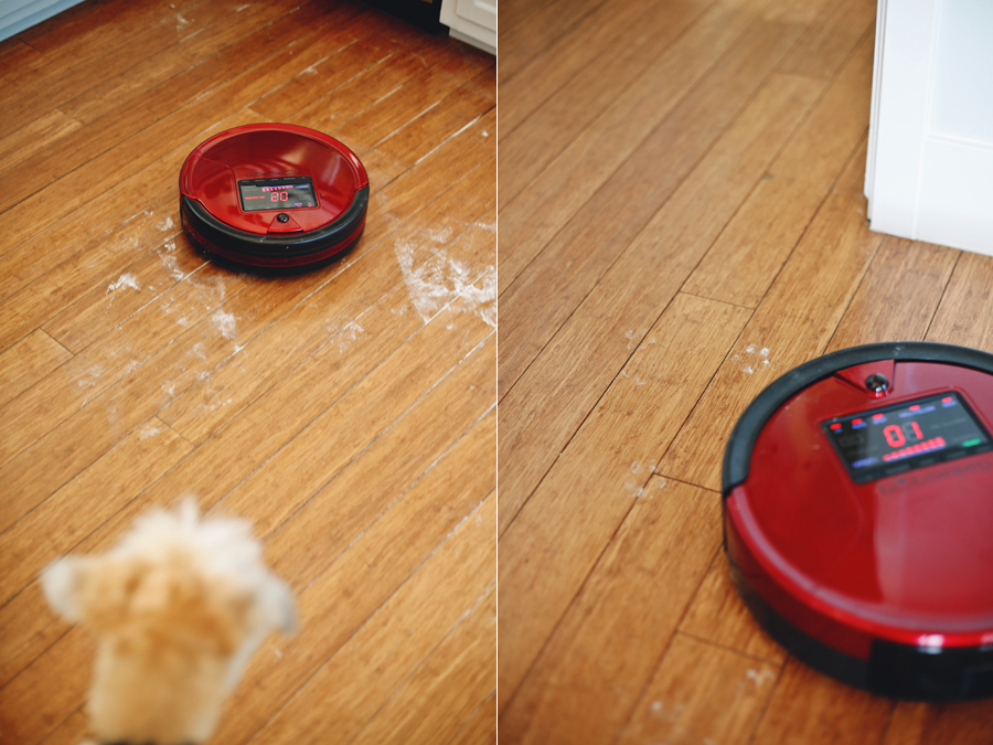 bobsweep-cleaning-action-dine-x-design