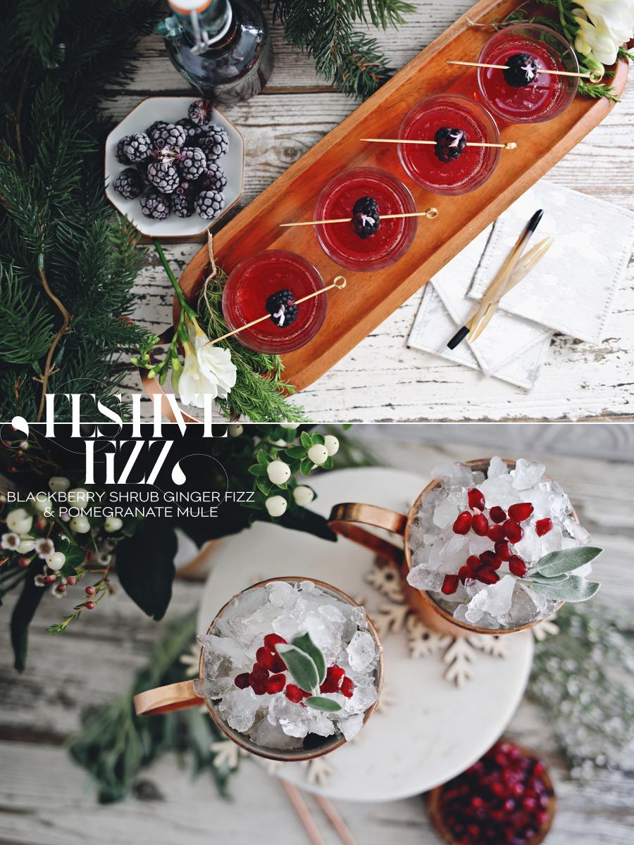 blackberry-fizz-cocktail-and-blackberry-shrub-ginger-fizz-pomegranate-mule-dine-x-design
