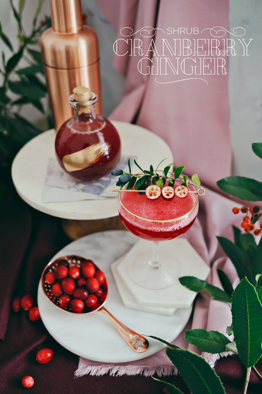 02_Cranberry-Ginger-Shrub-Cocktail-Dine-X-Design.jpg