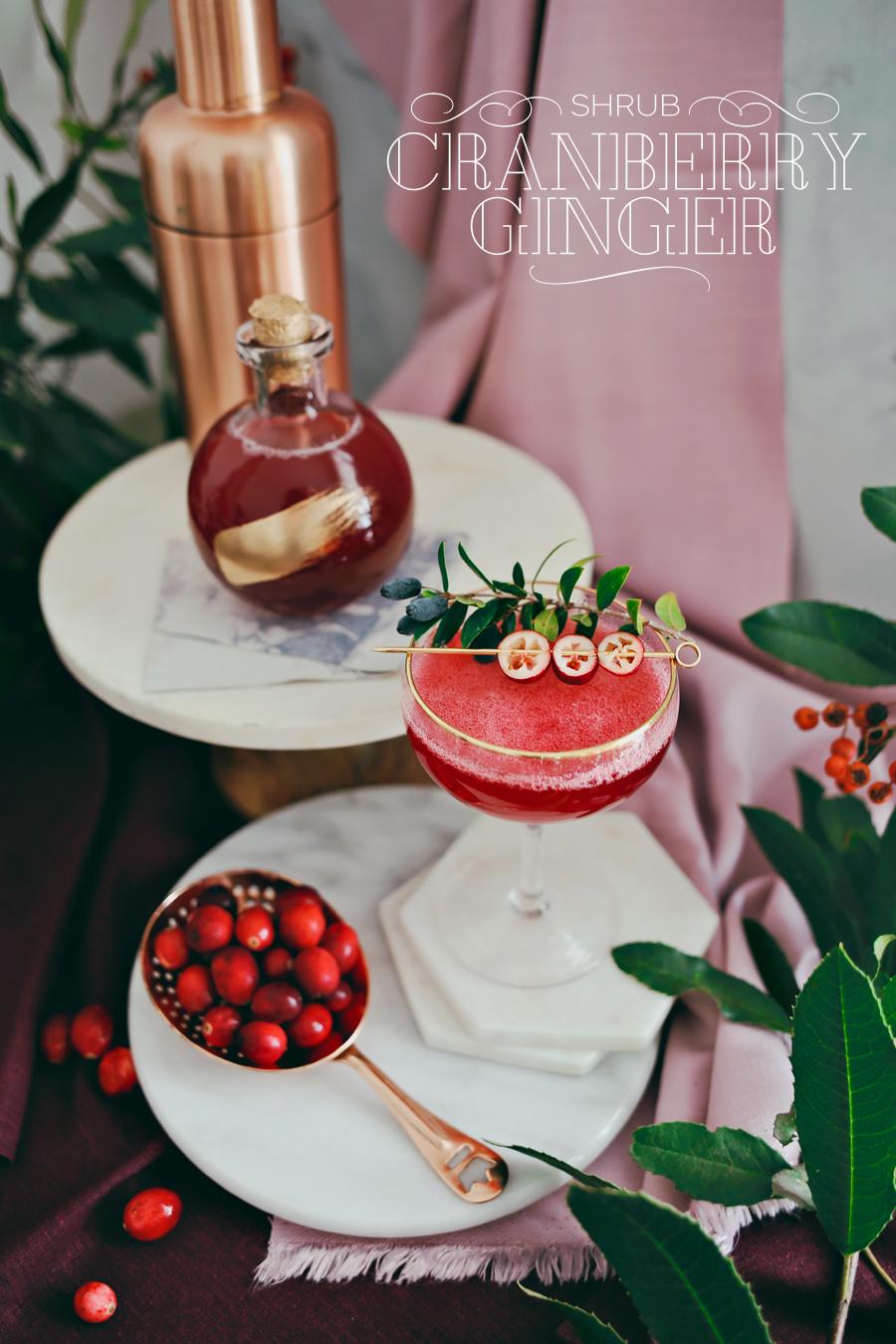 02_Cranberry-Ginger-Shrub-Cocktail-Dine-X-Design.jpg