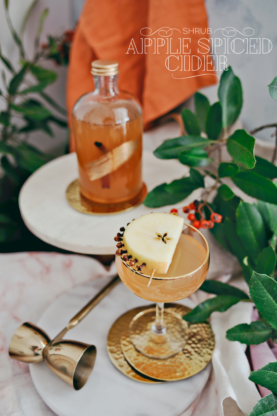 03_Apple-Spiced-Cider-Shrub-Cocktail-Dine-x-Design.jpg