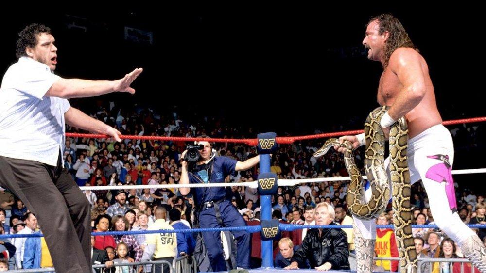 06_WWE-Encyclopedia3007.jpg