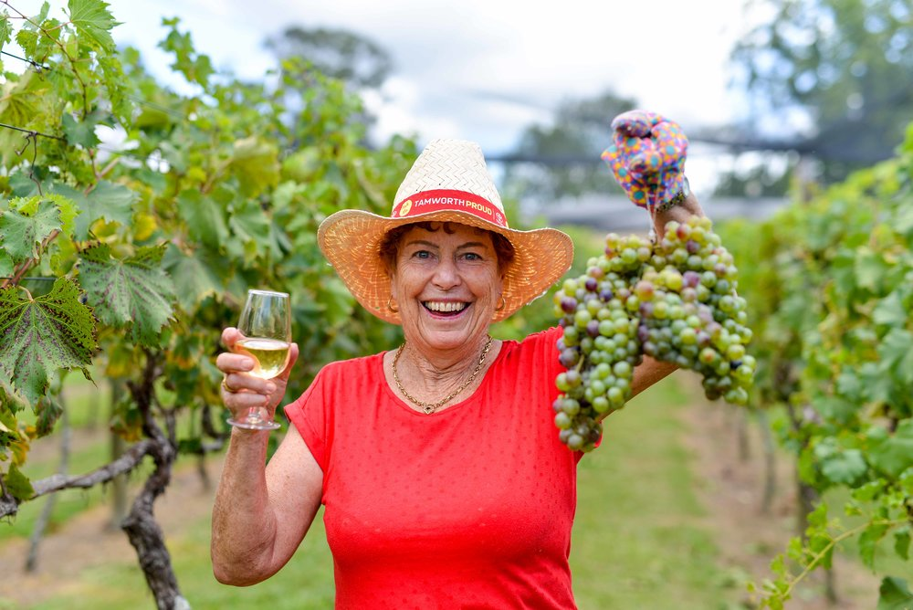 Raleigh Winery First Harvest-362.jpg