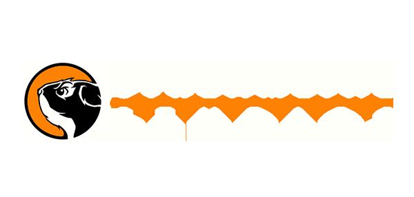 SLS_logo.png