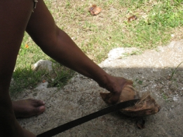 tear the husk from the coconut