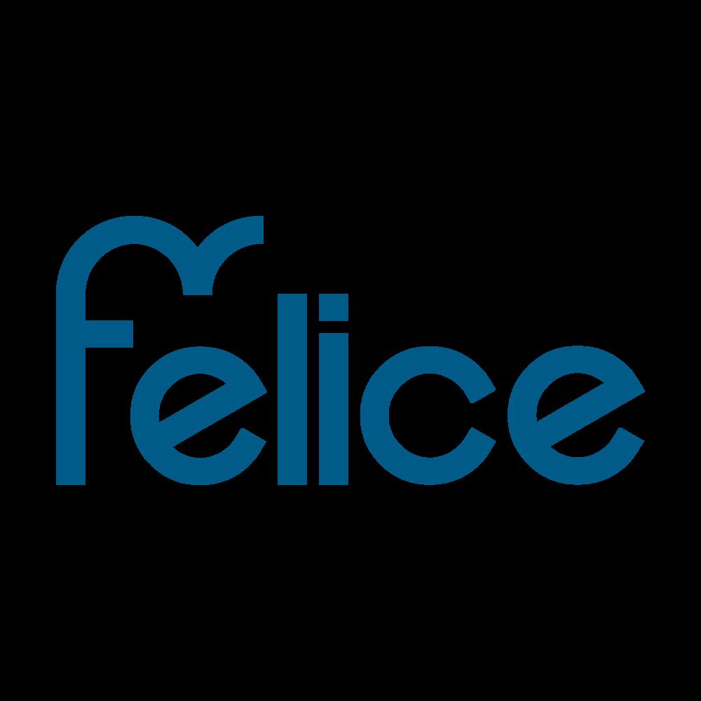 FELICE_Logo bleu dark TEXT.png