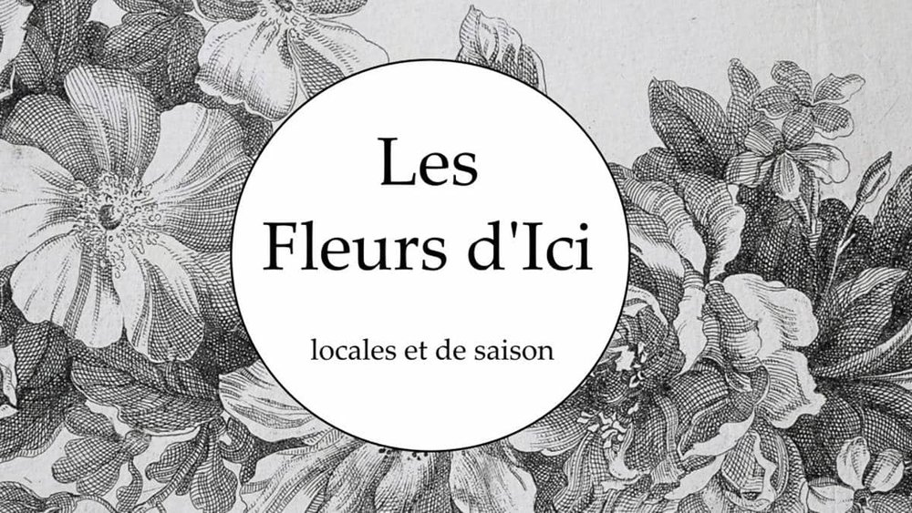 fleurs-dici-JAF-info-Fleuriste.jpg