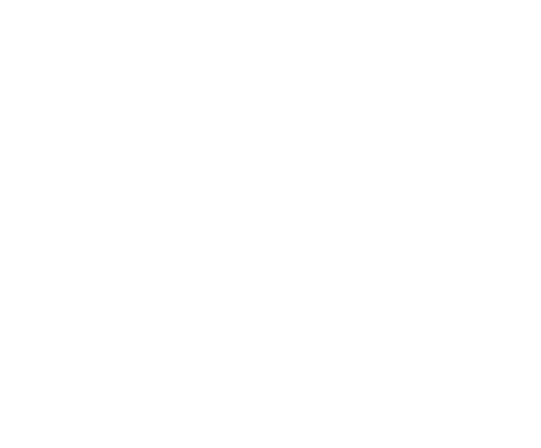 Metrix Inspection Group