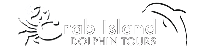 CrabIslandDolphinTours Small Logo.png