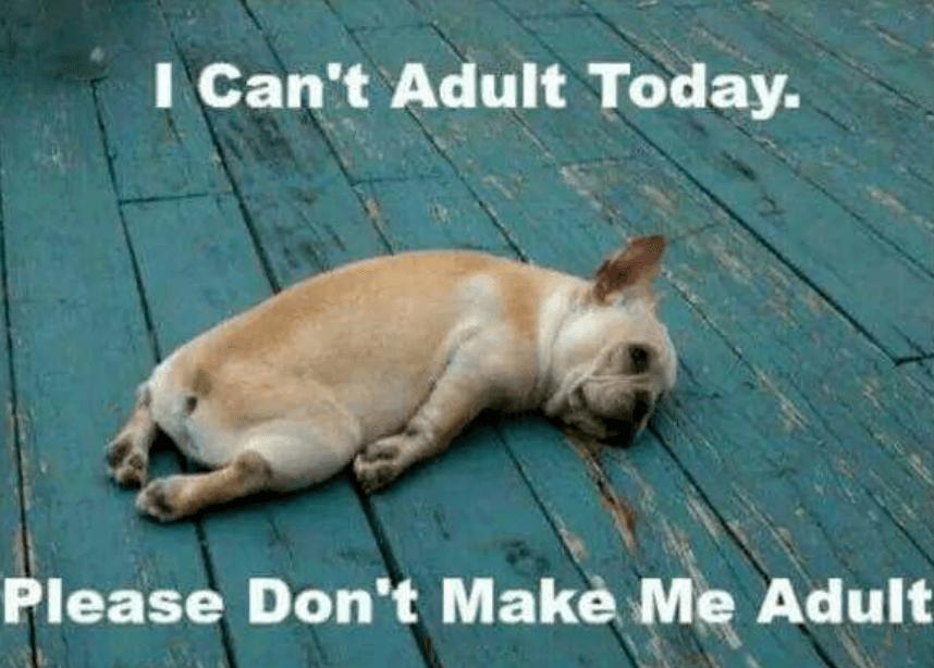 Don't make me adult