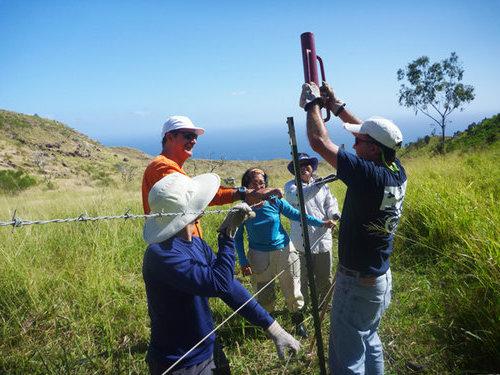 Volunteers restore land on Gill Ewa Lands