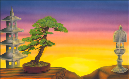 Morning Meditation  Beauty Of The Bonsai Collection