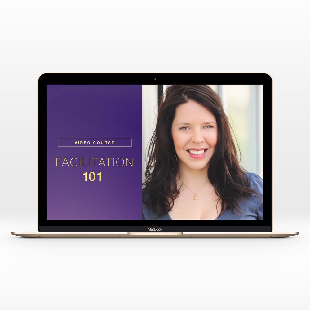 DM.2019.website.SalesPage_Facilitation101.png