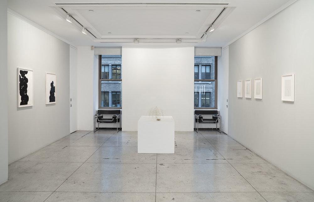 Christiane Löhr: diffuse , Installation view at Jason McCoy Gallery, 2018.