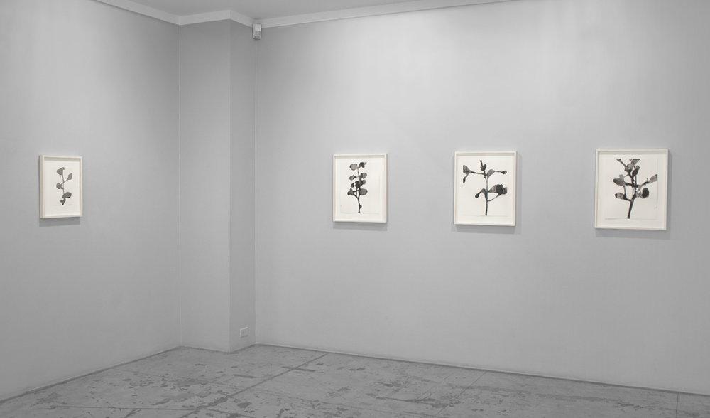 Christiane Löhr: displuvio,  Installation view at Jason McCoy Gallery, 2015.