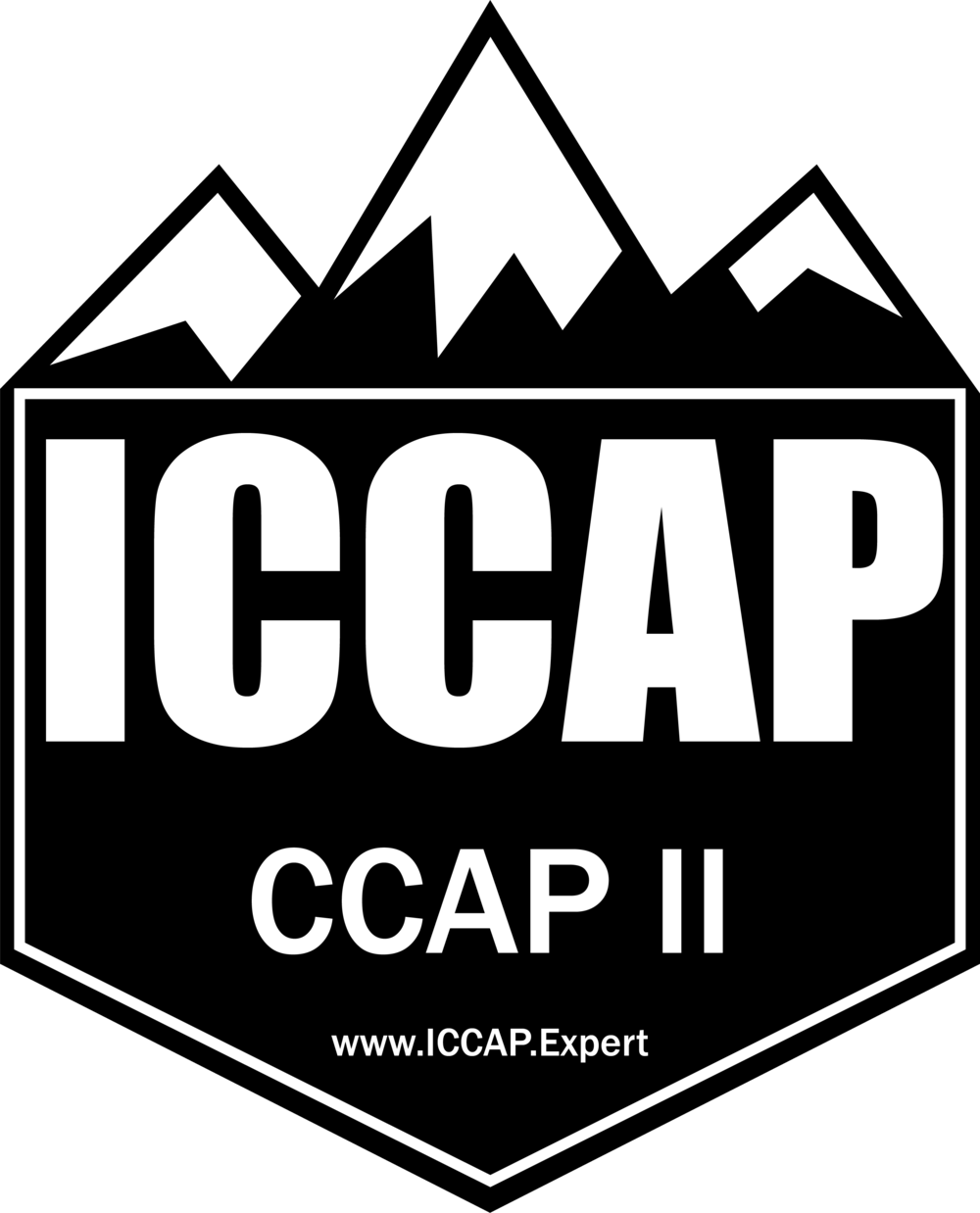iccap-ccap-II-advocacy-marketing-certification.png