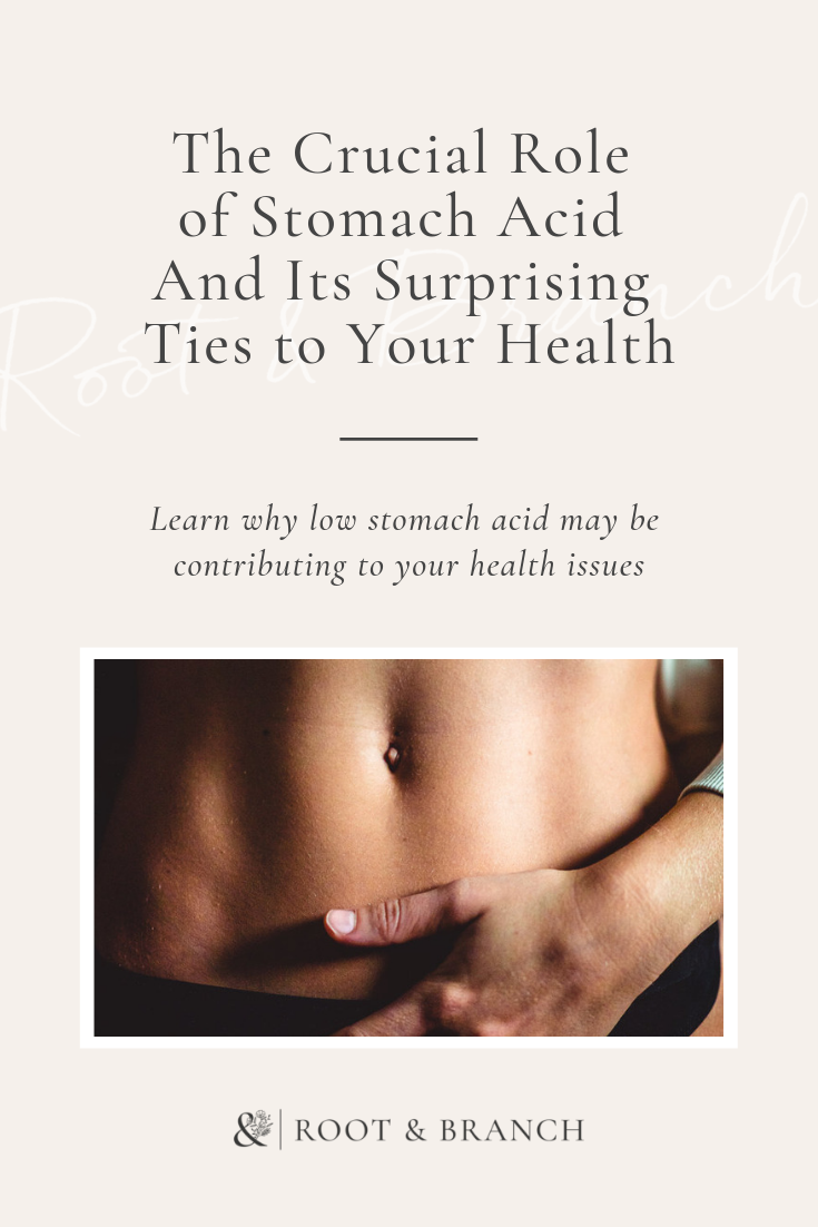 The Crucial Role of Stomach Acid & Its Surprising Ties to Your Health (1).png