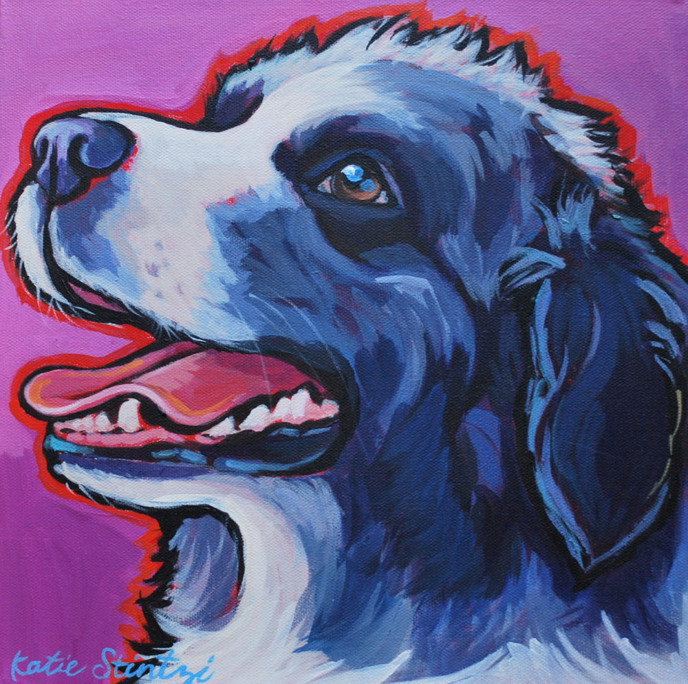 Australian Shepherd Dog Portrait Painting.JPG