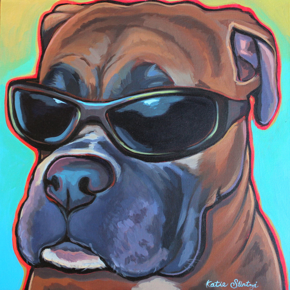 Boxer Dog with Glasses.jpg