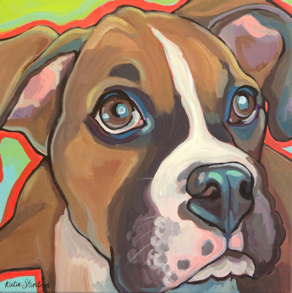Boxer Pet portrait.jpg