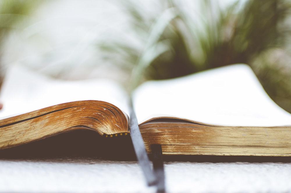 The Baptist Distinctives -