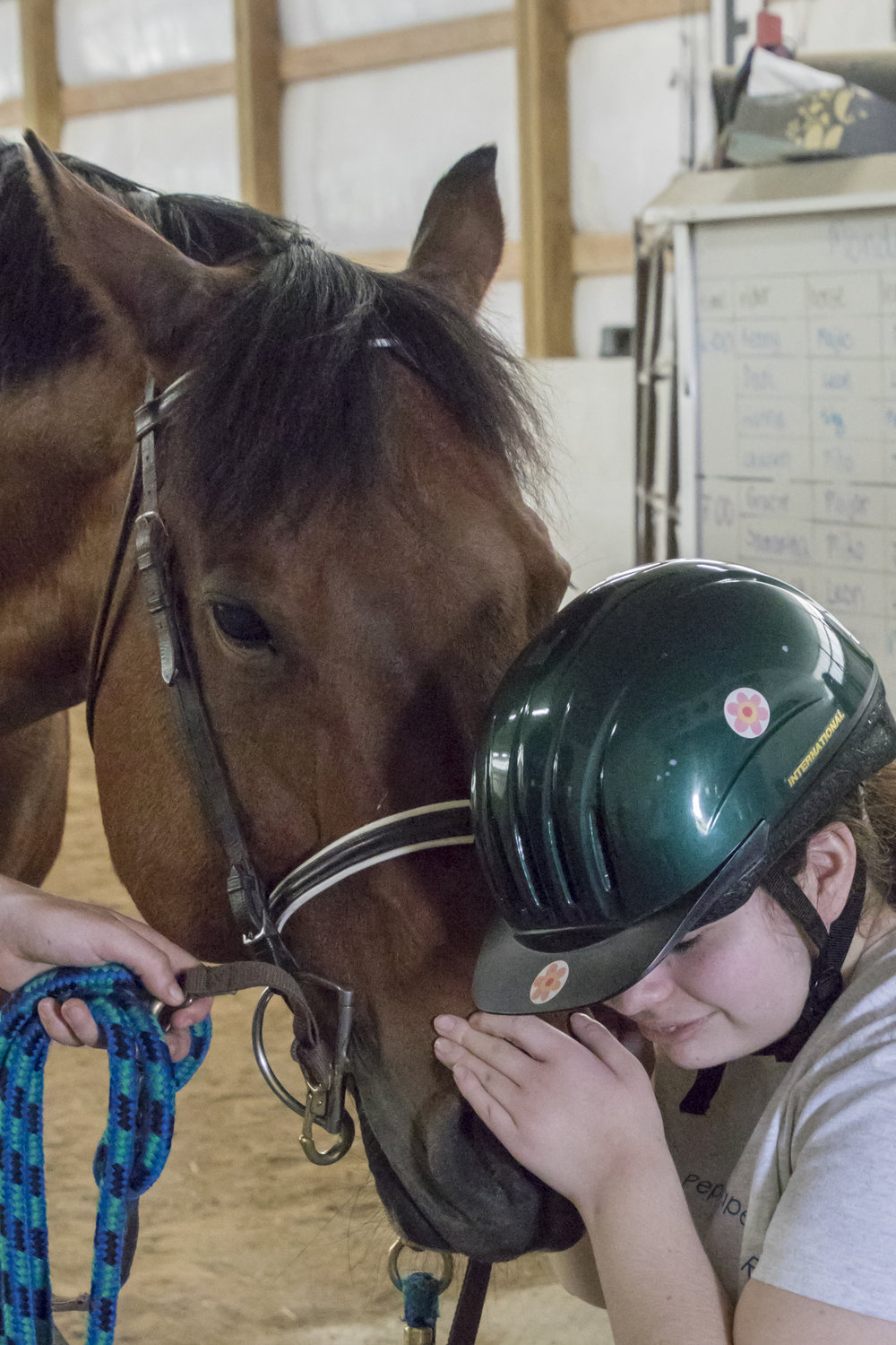 """B Smiley - """"Mr Perfect"""" is my nickname—because…I'm a handsome red roan Quarterhorse gelding. I take care of my riders by stopping and swishing my tail every time they get off balance."""