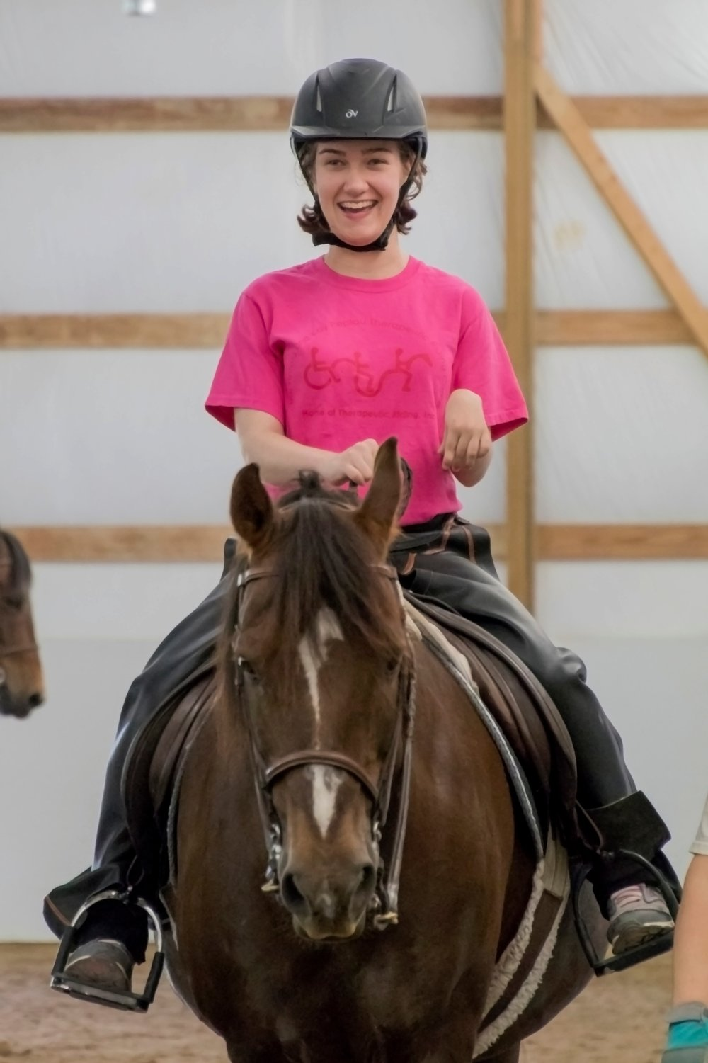 Hey Dobbs! - I'm spunky and I love to GO! I'm a liver chestnut Morgan gelding, and love teaching riders to become independent. My big trot is so much FUN!