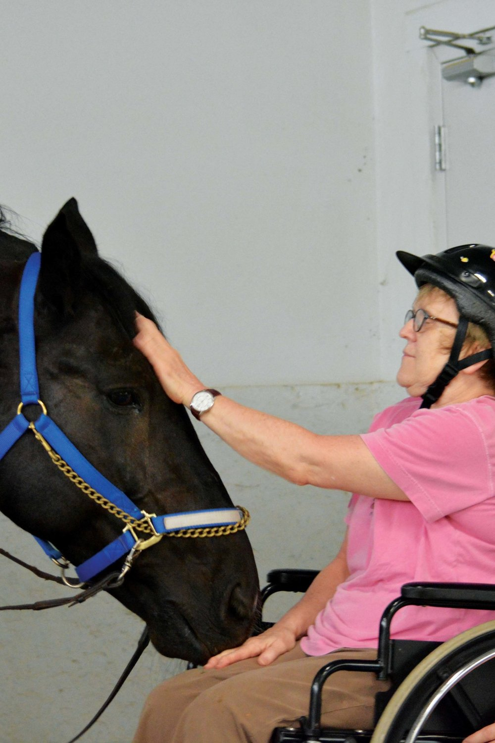 Ella - I'm a big black Percheron mare, the tallest in the barn at 16.3 hands (that's TALL!). I'm patient will ALL of my riders and love getting scratched.