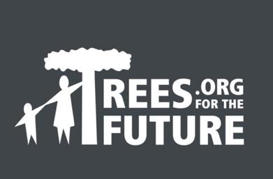 TREES_ORG.jpg