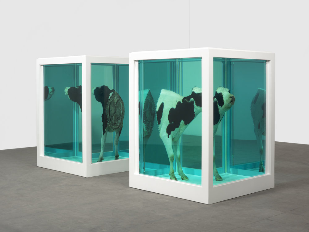 damien-hirst-loves-paradox-2007-photographed-by-prudence-cuming-associates.jpg