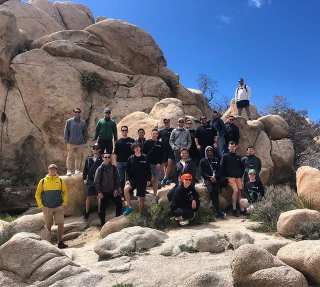 We had a great day showing the friendly folks at #cashapp the beauty of Joshua Tree. The park is so lush right now! We're all loving it!