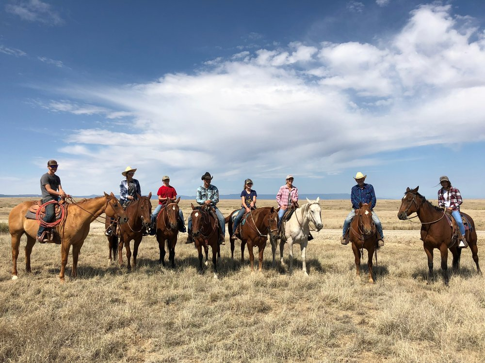 Horse riding gang.JPG