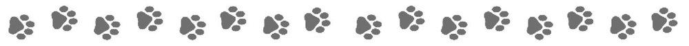 paw-prints-line_LARGE.jpg