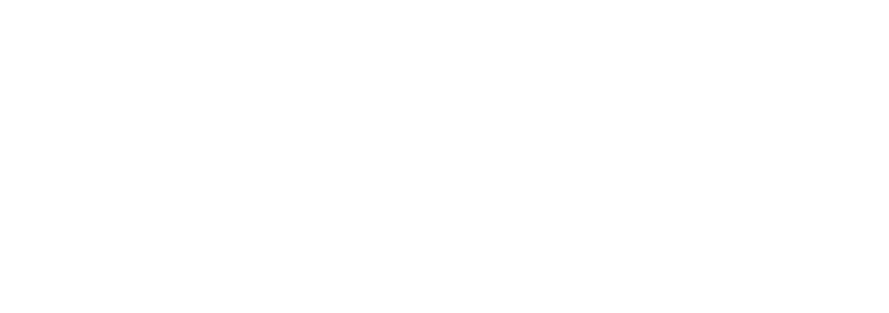 Barnes Law Firm, P.A.