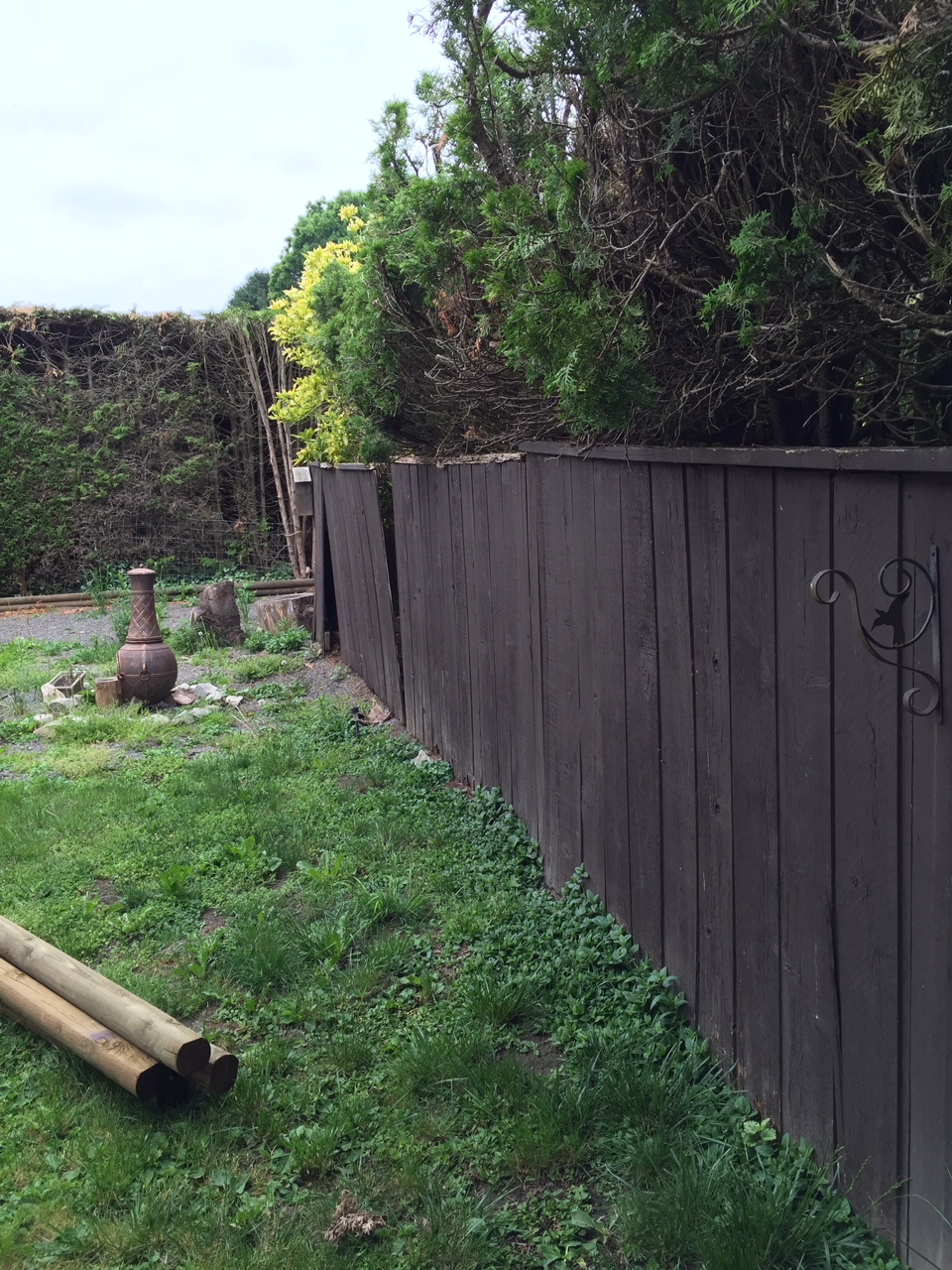 The Everyday Journalista, Everyday Journalista, Backyard Makeover, Backyard update, Backyard sketches, Backyard plans, DIY, Fence DIY, New Fence, New fence project,
