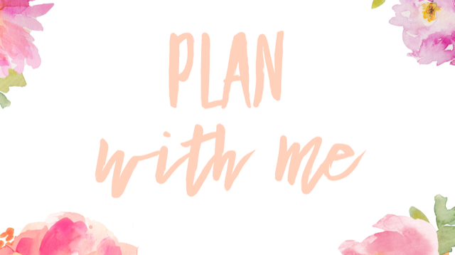 plan with me, planner inserts, planner layout, planer spread, everyday journalista, the everyday journalista, B6 travelers notebook, B6 planner inserts, printable inserts, printable planner inserts,