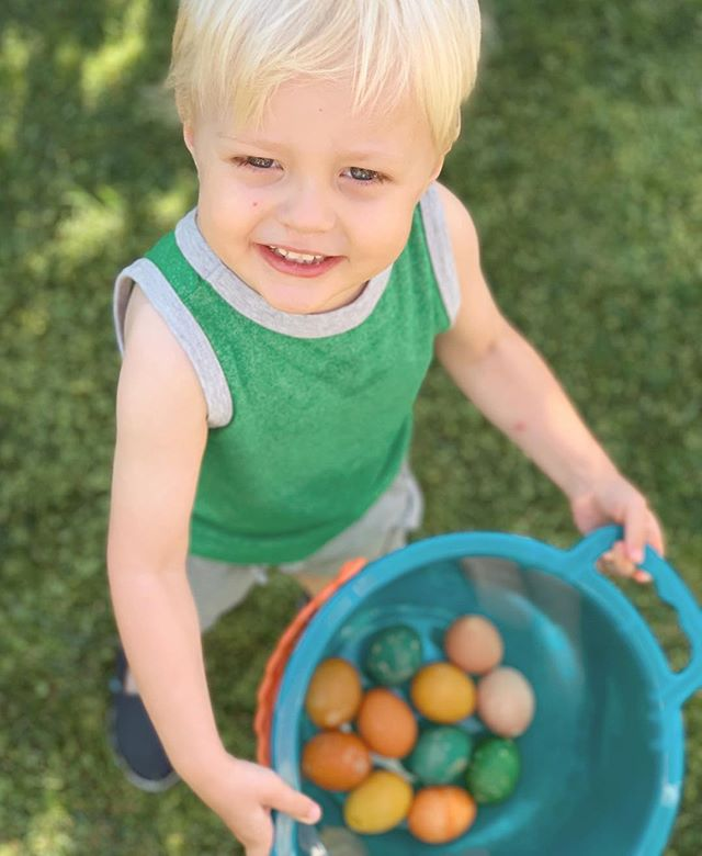 From our family to yours, whatever you believe in or practice, sending thoughts of peace and love!⁣ ⁣ And Luca's first year finding eggs was a hit!⁣ ⁣ Tip: coloring organic brown eggs results in egg colors that are so close to what's found in nature!