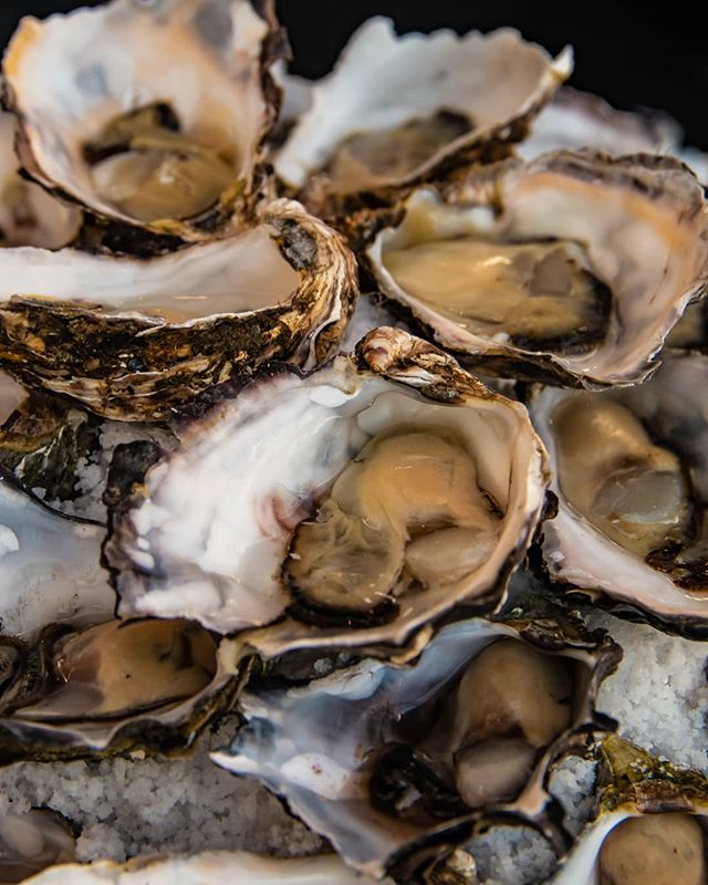 Function Food at Bells Hotel! Ask about our oyster bar for your next function! ♥️🥂👌 #oysters #oysterbar #functionspaces #bellshotel #southmelbourne