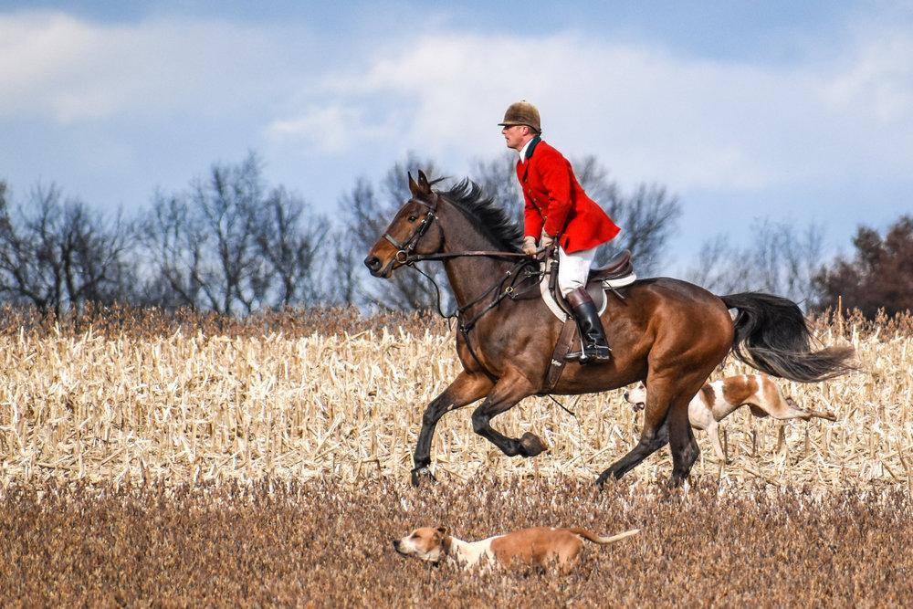 Green Spring Valley Hounds huntsman, Ashley Hubbard