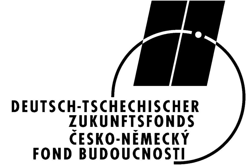 logo-dtzf-sw-we-jpg-format.jpg