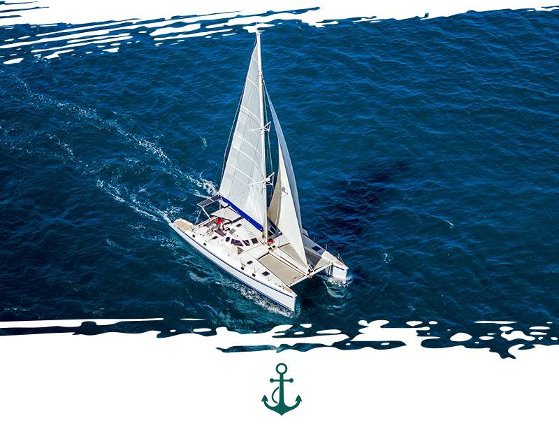 seaforth_catamaran_sailing.jpg