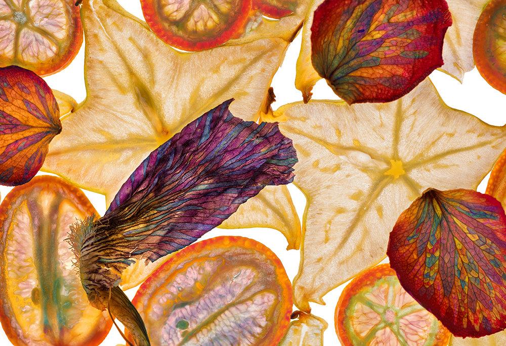 Star Fruit Kumquat Rose 03032016