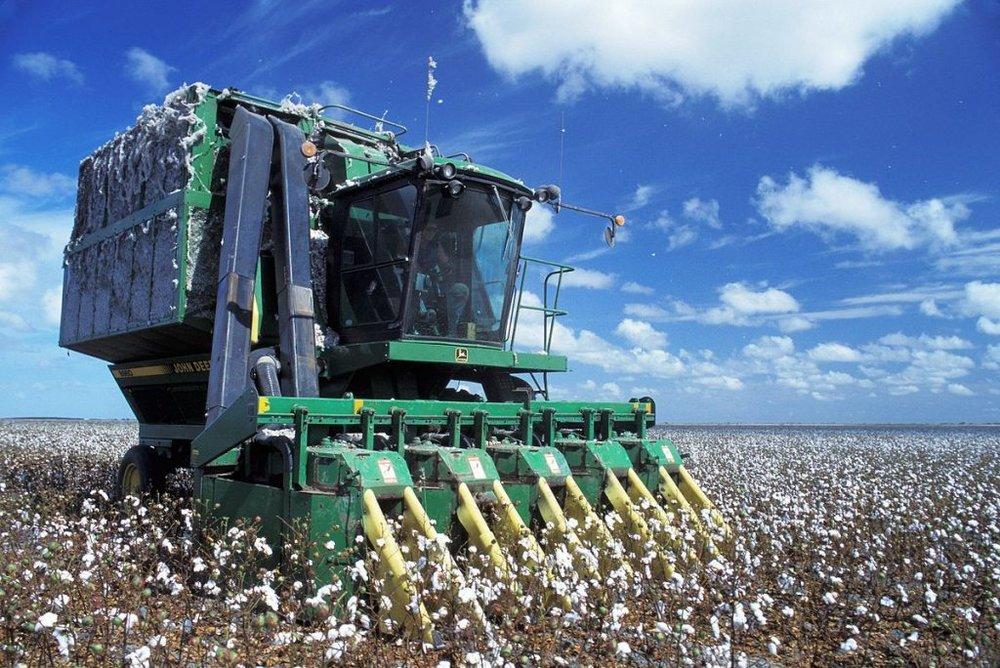 1200px-Baumwoll-Erntemaschine_auf_Feld.jpeg