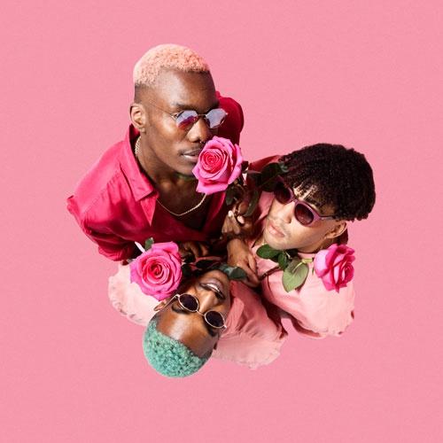THE FLOWERBOYS -