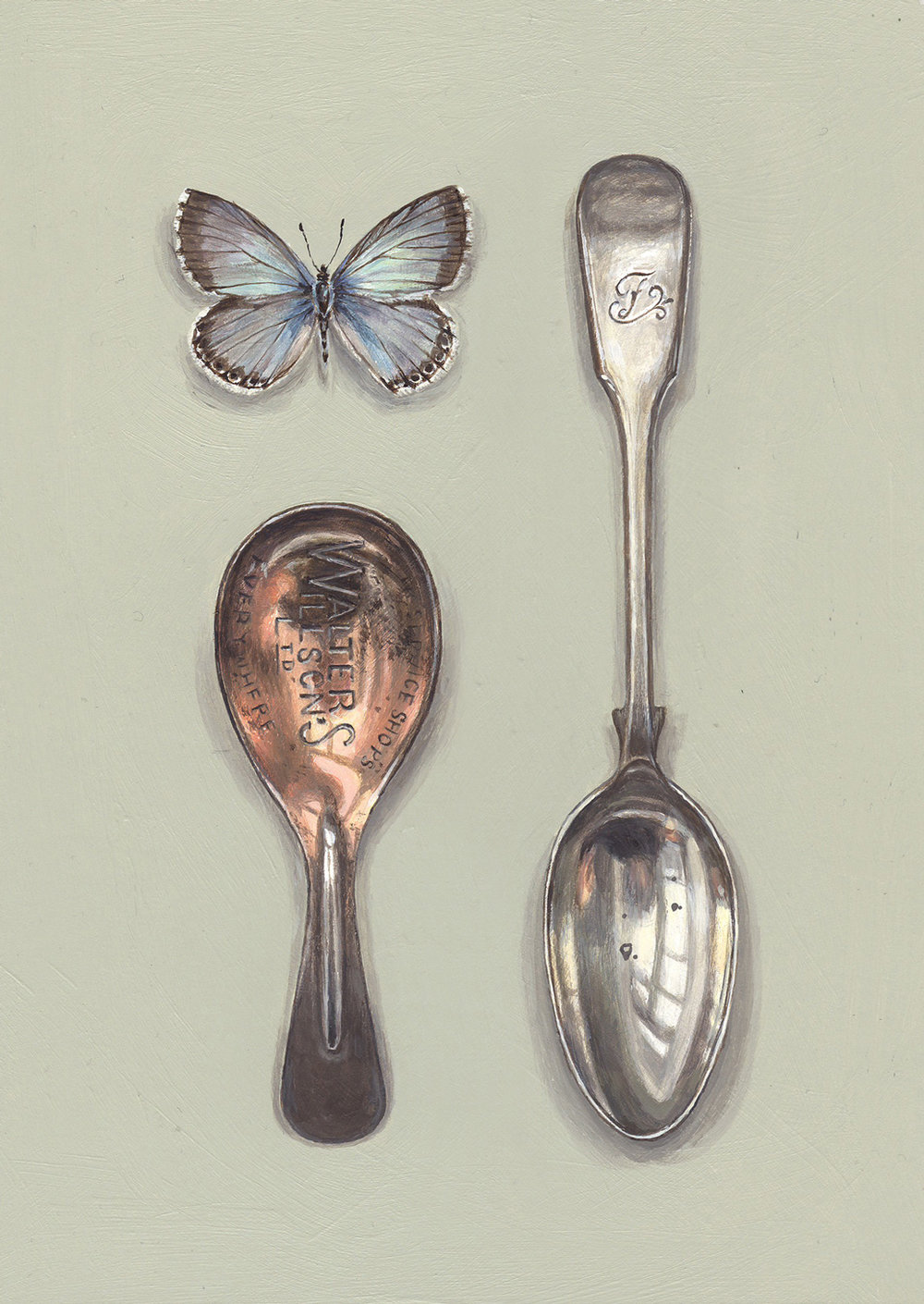 spoons with chalk hill blue